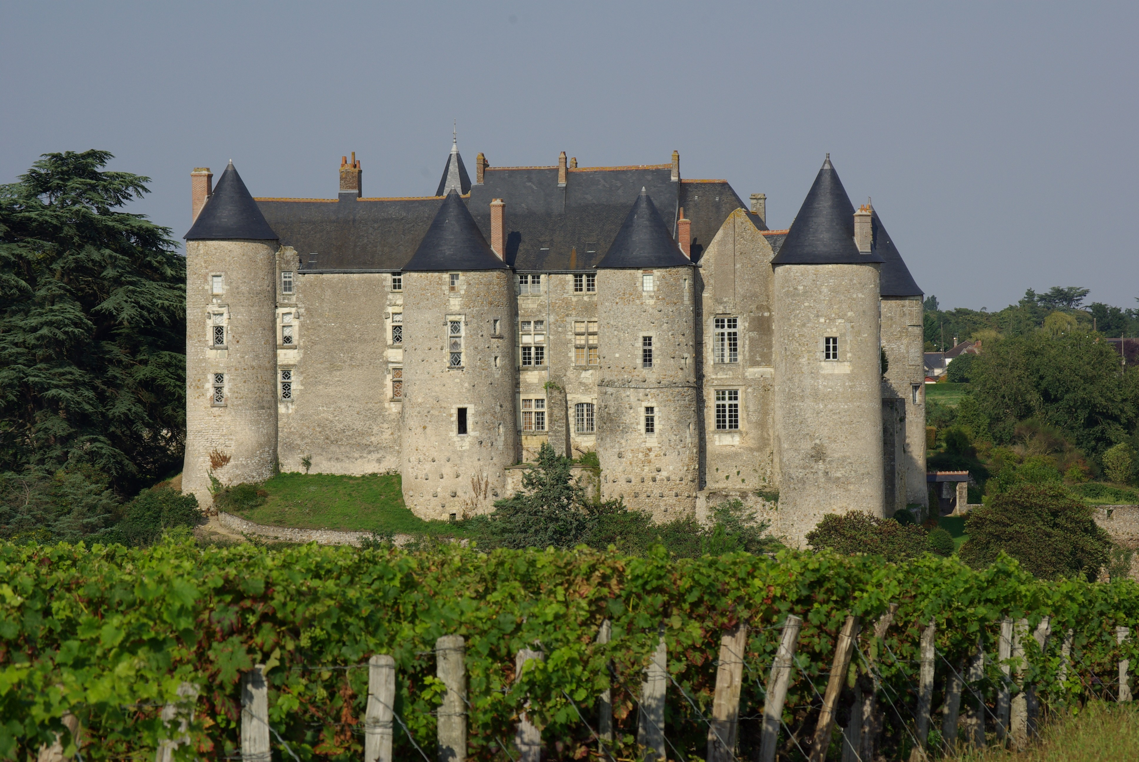 FOURRIERE LUYNES