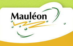 GARAGE OLIVIER MAULEON